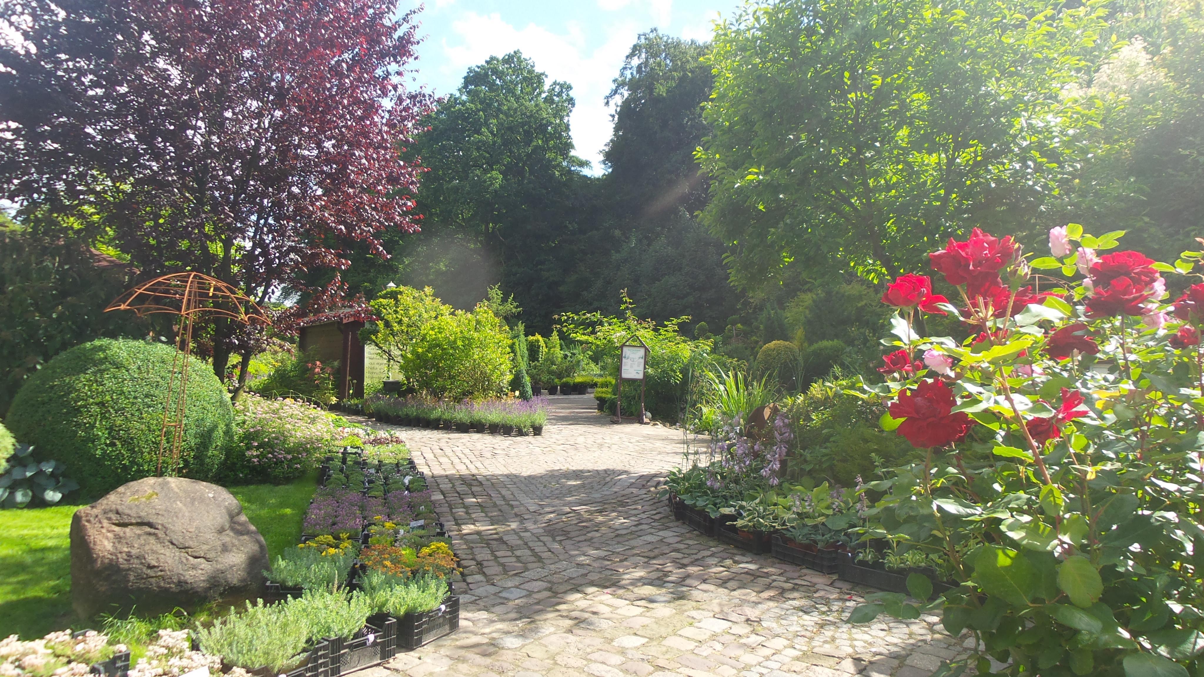 Pflanzenwelt Und Gartencenter Kustenbaumschule Kusten Garten Service